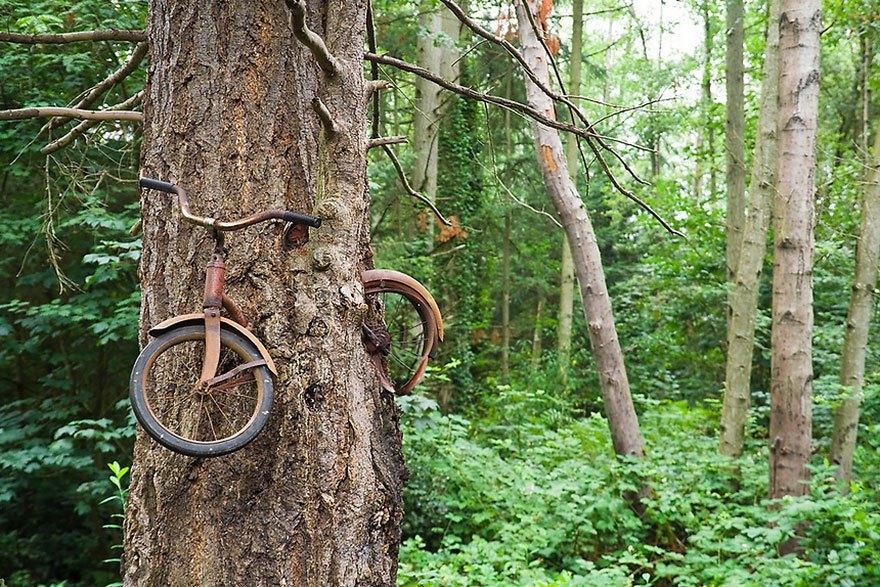 Der Fahrrad-Baum