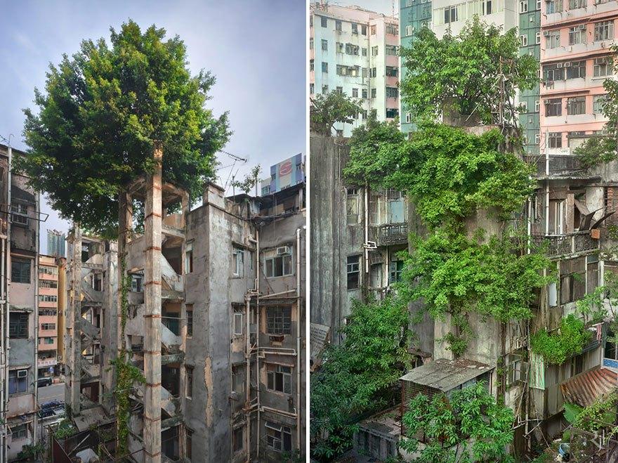 Häuser in Hongkong
