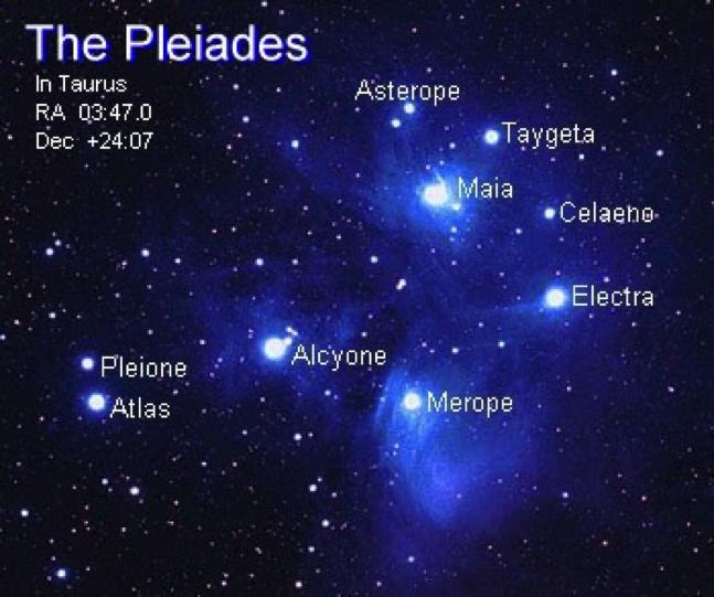 Corey - Pleiaden 2