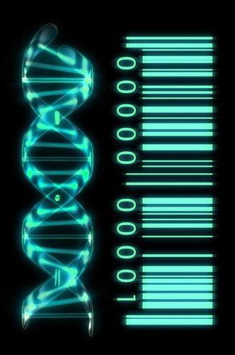 Biophotonik – die Wissenschaft hinter der energetischen Heilung ...