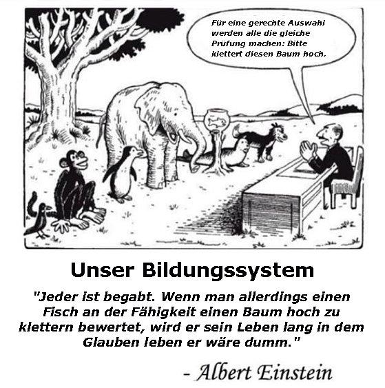 Unser Bildungssystem