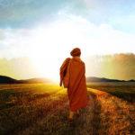 Rückkehr zur Quelle – Die Reise des Geistes nach Hause