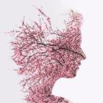 Das Gehirn aufladen: eine vollständige Anleitung, um die Gehirnfunktion zu verbessern und eine neurale Regeneration mit Nahrungsmitteln und Kräutern durchzuführen