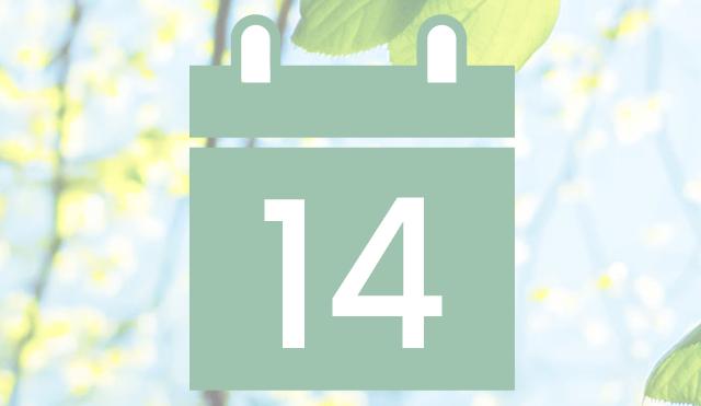 Kalender für Gruppentreffen und Anlässe