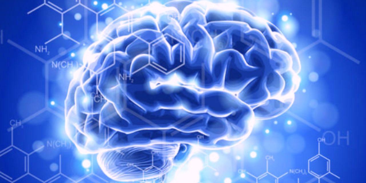 Wie deine Gehirnwellen deine Realität erschaffen und formen