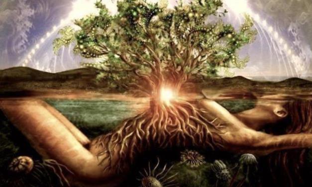 Mutter Erde leidet, sie stöhnt und schüttelt sich – aber es ist nicht das CO2