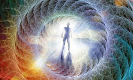 Spirale und Torus: Bausteine und Symbole für das lebendige Universum